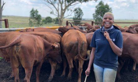 An aspiring young farmer brings hope to the farming community