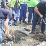 Companies donate trees to Basizeni LSEN School